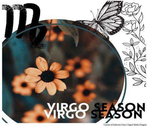 Zodiac 101 & what virgo season holds
